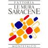 cantina-montefalco-mura-saracene1-100x100